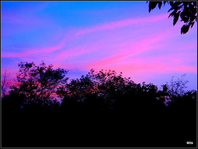 An Evening - 1
