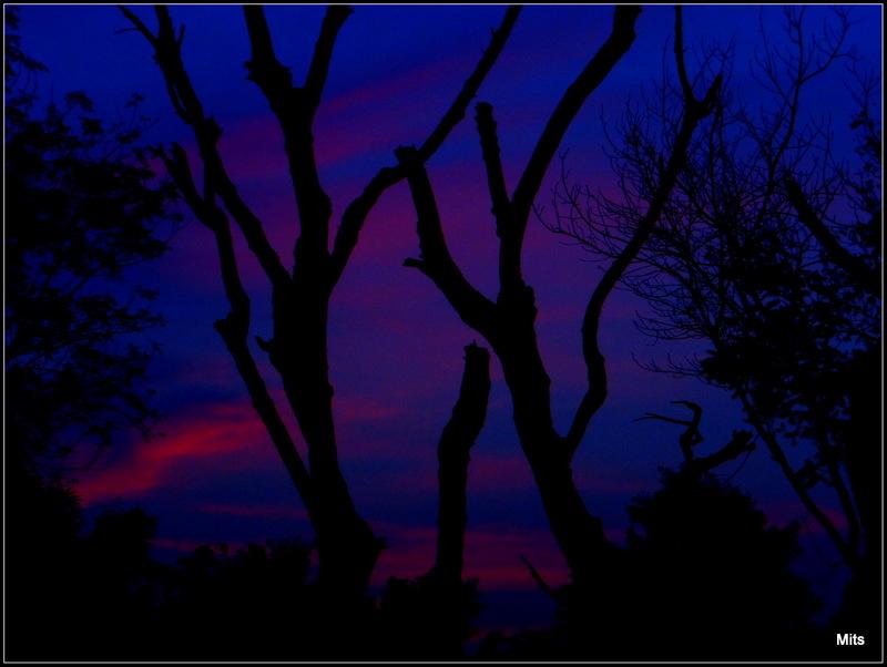 An Evening - 3