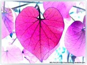 Leaf - Heart Shape