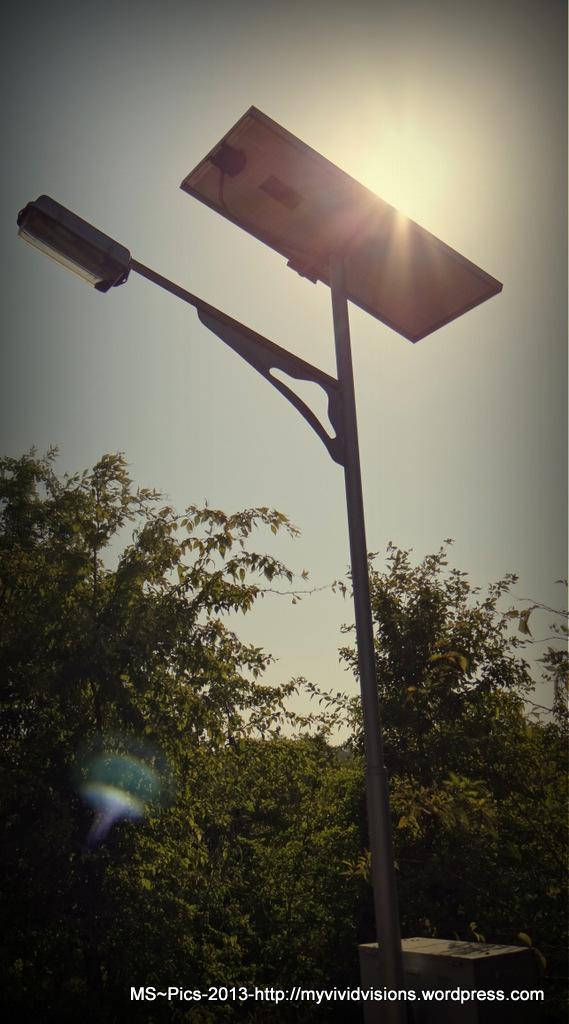 Solar Light Pole in Gandhinagar, Gujarat, India